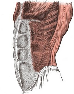 Discussing Pilates, posterior pelvic tilting, abdominal bracing ...